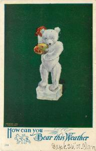c1907 Twelvetrees Postcard Toy Polar Bear w/ Fan, How Can You Bear this Weather?