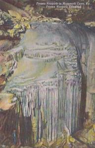 Kentucky Mammoth Cave Frozen Niagara Entrance Curteich