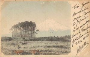 Japan Mount Fuji 1904 Hand Colored 03.82