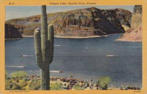 Arizona Canyon Lake Apache Trail 1955 Curteich