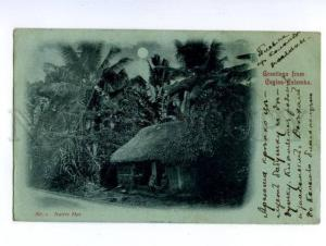 138715 Greetings from CEYLON COLOMBO Native Hut MOON LIGHT OLD