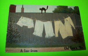 Old Town Maine Postcard Black Cat Clothesline A Line From ME Antique Orig 1911
