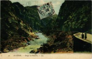 CPA Algerie Gorges de Palestro ALGERIE (749276)