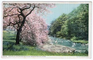 Spring In The Berkshire Hills, Near Pittsfield, Mass