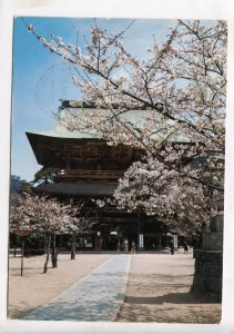 JAPAN, The Kenchoji Temple and Cherry Trees, used Postcard