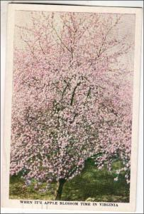 VA - Apple Blossom Time