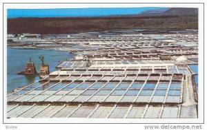 Salinas del Janubio, Islas Canarias, 1960-70s
