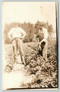 RPPC Farmer-Workers Use Pump Gun to Spread Insecticide on Crops~Bug Spray~c1910