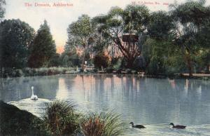 The Domain Ashburton Antique New Zealand Postcard