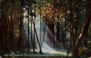 California Mt Tamalpais Railway Muir Woods By Moonlight 1915