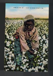Mint Postcard Black Americana Boy Picking Cotton COme See Me Down in Sunny Dixie