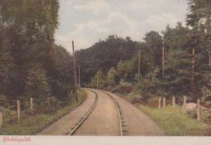 Bokebergsslatt Railway Train Track Skane County Swedish Antique Sweden Postcard