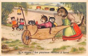 Cart Cat Unused