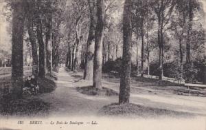 BREST, Finistere, France, 1900-1910's; Le Bois De Boulogne