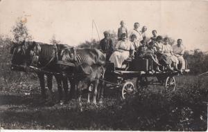 RPPC SOCIAL HISTORY SKINNY HORSES VERY ANIMATED CART REAL PHOTO POSTCARD