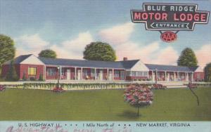 Virginia New Market Blue Ridge Motor Lodge 1955