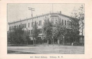 Sidney New York Hotel Street View Historic Bldg Antique Postcard K16321