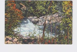 VINTAGE POSTCARD NATIONAL STATE PARK LINCOLN NATIONAL FOREST RIO RUIDOSO WATERFA