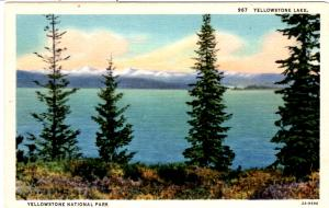 SANBORN 967, Yellowstone Lake, Yellowstone National Park