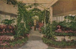 VAN NUYS , California , 00-10s ; Germain's Nursery