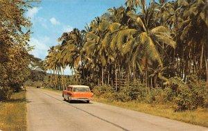 Interamerican Highway Panama Unused