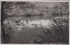 The Weir Dartmoor Angle Bridge Vintage Real Photo Postcard