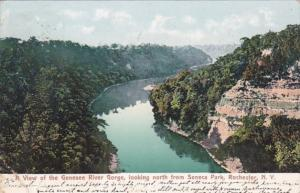 New York Rochester View Of The Genesee River Gorge Looking North From Seneca ...