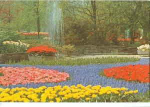 Netherlands, Keukenhof, Lisse-Holland, 1976 used Postcard