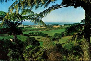 New Zealand Auckland View From Waitakere Scenic Drive