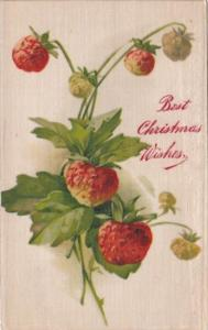 Silk Card Best Christmas Wishes With Strawberries