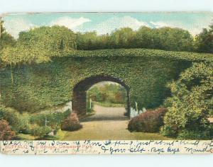 Pre-1907 IVY BRIDGE & PARK SCENE Buffalo New York NY r7539