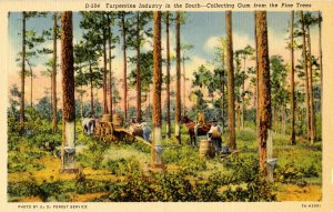 Turpentine Industry in the South