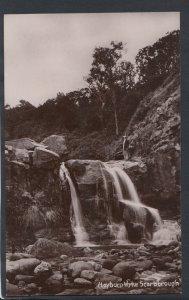 Yorkshire Postcard - Hayburn Wyke, Scarborough    RS10998
