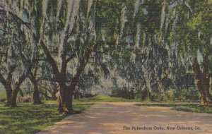 NEW ORLEANS, Louisiana, 30-40s; The Pakenham Oaks