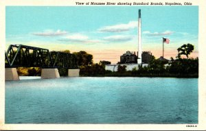 Ohio Napoleon View Of Maumee River Showing Standard Brands Curteich