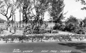 Avon Park Florida Cactus Garden Real Photo Antique Postcard K20624