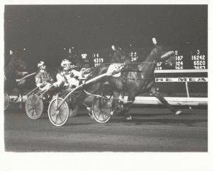 MEADOWLANDS Harness Horse Race , GLEN ALMAHURST winner, May 1984