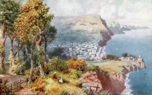 UK - England, Sidmouth from Peake Hill    *Artist: Wimbush