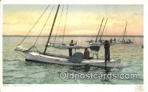 Oyster Tonging Sail Boat Postcard Post Card  Oyster Tonging