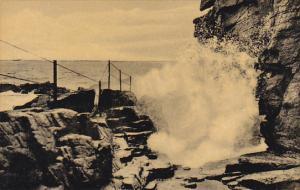 Maine Bar Harbor Thunder Hole Along Ocean Drive Acadia National Park Albertype