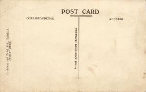 trinidad, B.W.I., The Savannah, Cows (1920s) Postcard