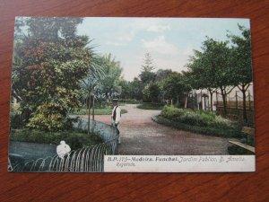 Funchal Madeira Postcard 1907-15 Unused Garden Scene Amelia
