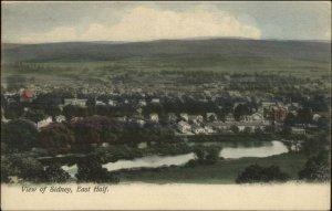 Sidney NY East Half General View c1905 Postcard