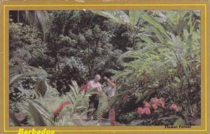 Flower Forest, Barbados, PU-40-60s