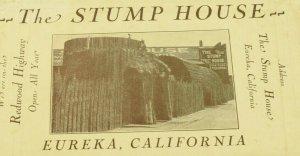 C. 1910 Redwood Burl Stump House Gift Shop Eureka, California Postcard Folder F5