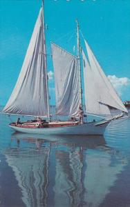 BECALMEDI, Sailing Vessel, 40-60s