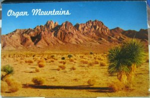 United States Organ Mountains Los Organos New Mexico - unposted