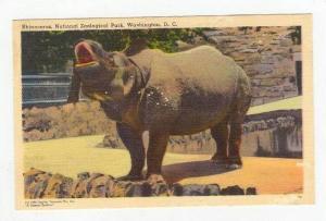 Rhinoceros,National Zoological Park,Washington,DC,30-40