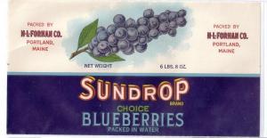 Sundrop Blueberries Portland ME Vintage Fruit Label Forhan