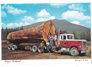 Oregon Toothpick Giant Fir Log 17,000 Board Feet on Semi Truck 4 by 6 card